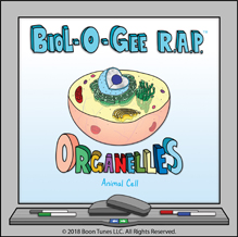 organelles_small